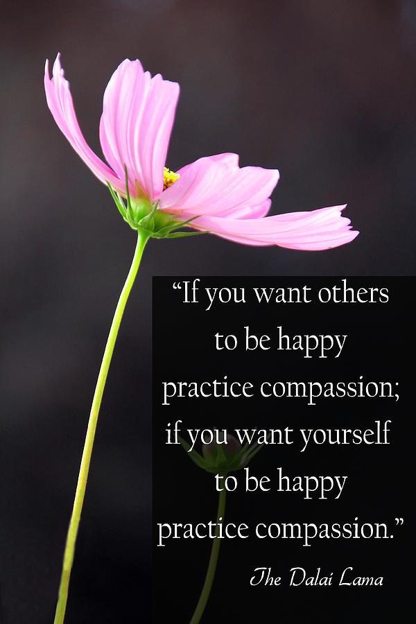 compassion-dana-kern